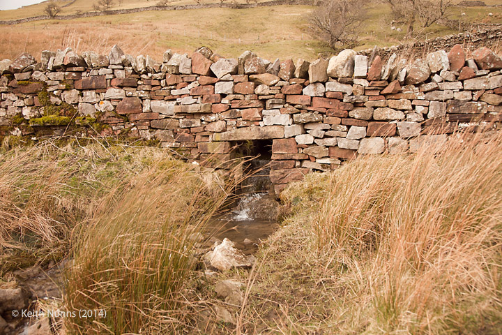 "261580: Culvert (1' 9"" diameter) Bank Gill: Elevation view from the east"