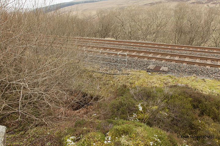 255360: Culvert - Skelton's Gill: Elevation view from the north east