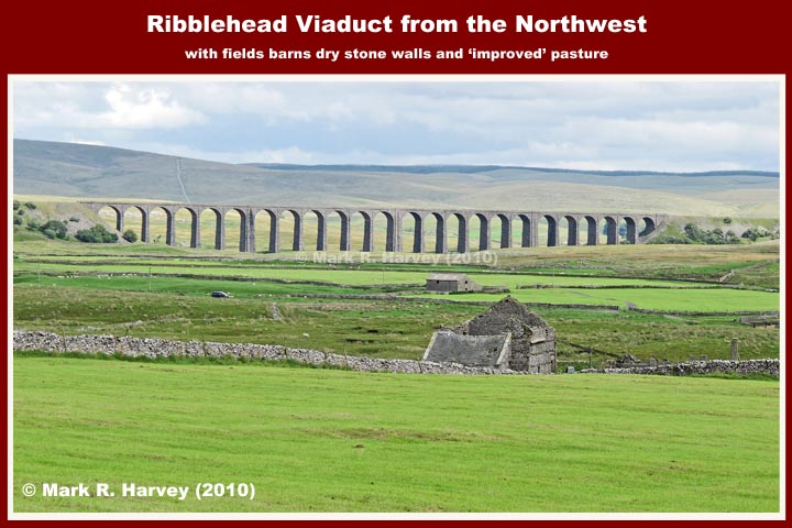 Ribblehead Viaduct: Context view from the northwest (with field barns)