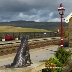 Sharing the view with Ruswarp on Garsdale Railway Station