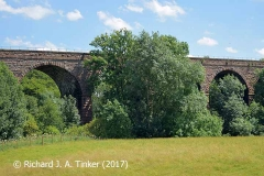 Bridge SAC/320 (Armathwaite Viaduct): west elevation, centre (2)