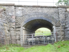 Bridge No 177 - Keel Well: Elevation view from East (2)