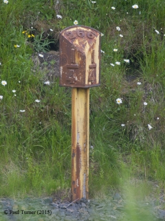 Milepost 266.25: Detail view from West