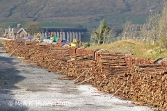 Ribblehead Railhead: Timber Transhipment 1