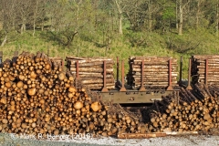 Ribblehead Railhead: Timber Transhipment 2
