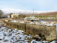 Ribblehead Station Cattle Dock: Elevation view from the south-east
