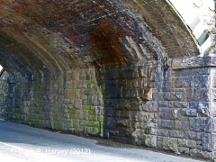Bridge SAC/6 - Cammock Lane: South abutment and springers