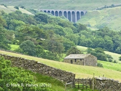 Arten Gill Viaduct (Bridge SAC/84) and Dentdale from the northwest