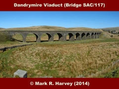 Dandrymire Viaduct (Bridge SAC/117): Elevation view from the southeast