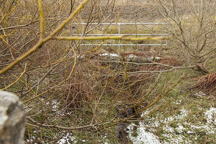 255360: Culvert - Skelton's Gill: Elevation view from the east